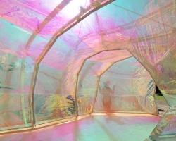 Serpentine Pavilion_2015_Interior_Selgascano.jpg